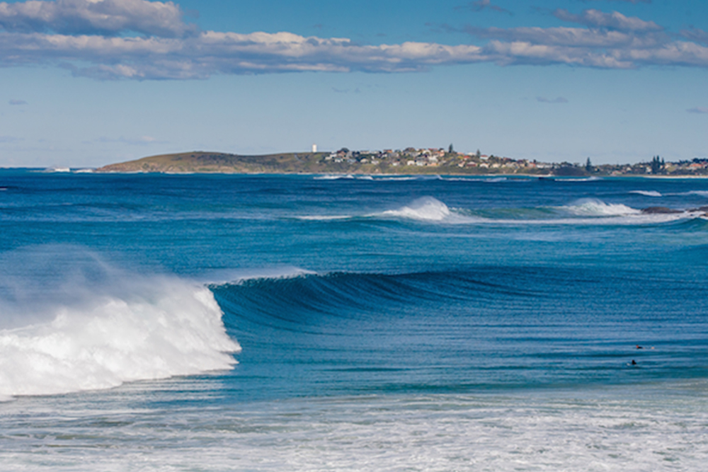 Pet friendly accommodation Woolgoolga & Coffs Harbour Surf safety beach bungalows