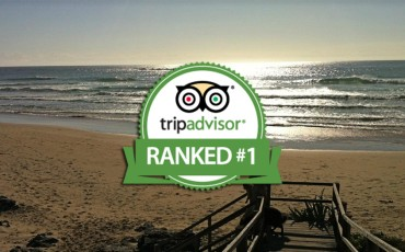 trip advisor blog post