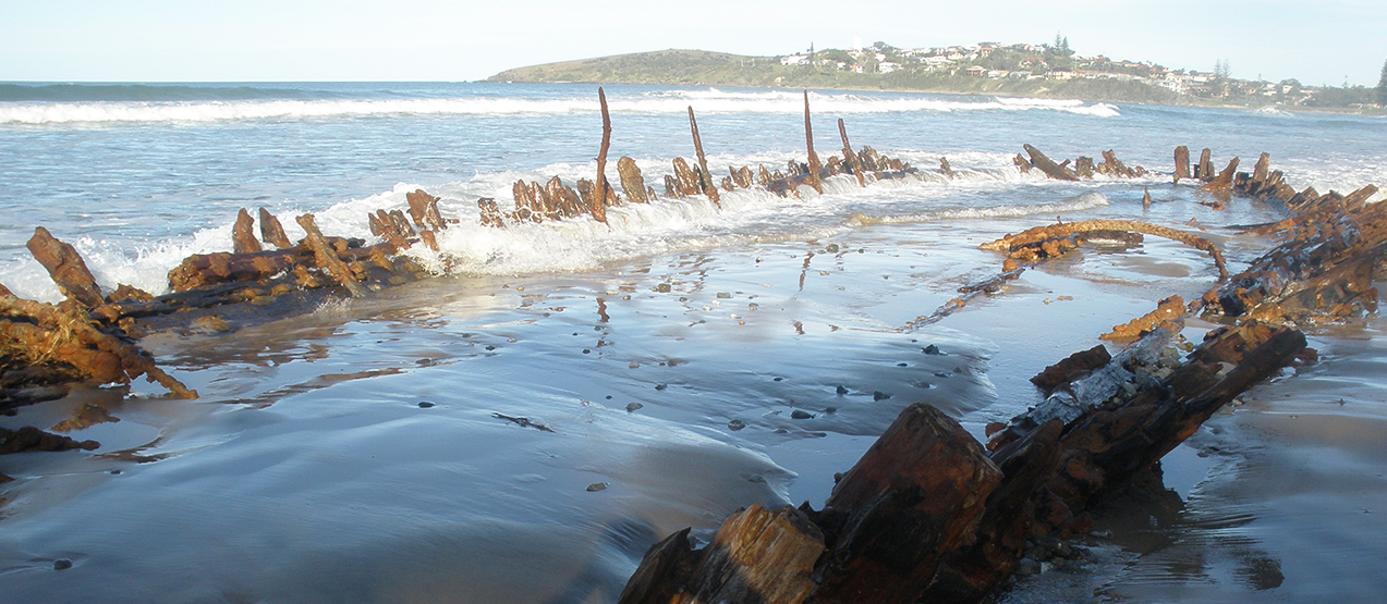 Buster Shipwreck Pet friendly accommodation Safety Beach Woolgoolga & Coffs Harbour