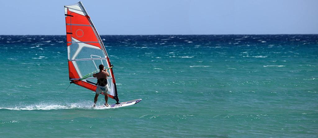 Pet friendly accommodation Woolgoolga & Coffs Harbour Activities water sports
